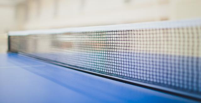 rete da ping pong