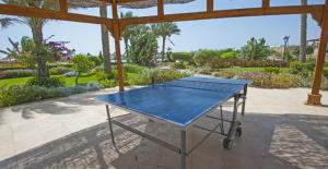 tavolo ping pong da esterno